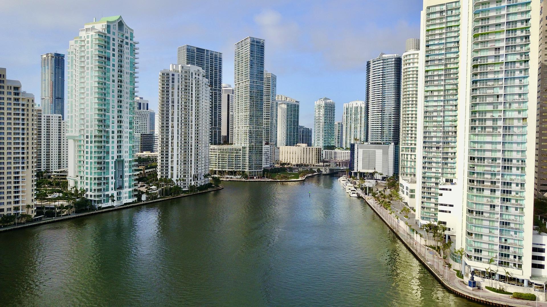 Best Mural Artist In Miami