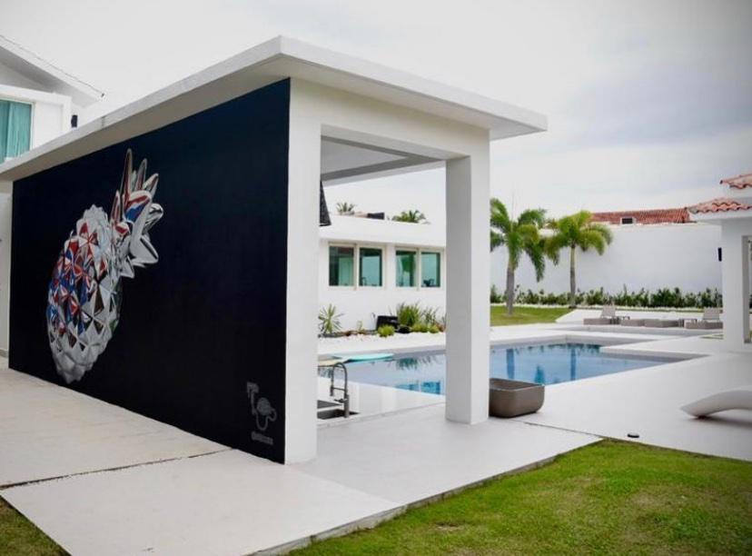 Miami Mural Artist Contact